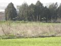 Α.Κ.Ι. Έρευνας Κυνηγίου & Μεγάλης Έρευνας στο Λαγκαδά 15-16/1/2011.